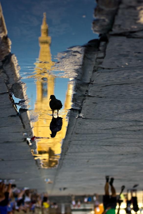 Santa Croce Reflection